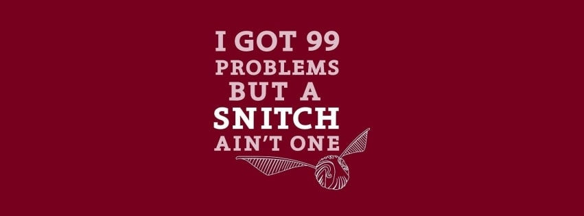 Harry Potter Quidditch Snitch Facebook cover photo