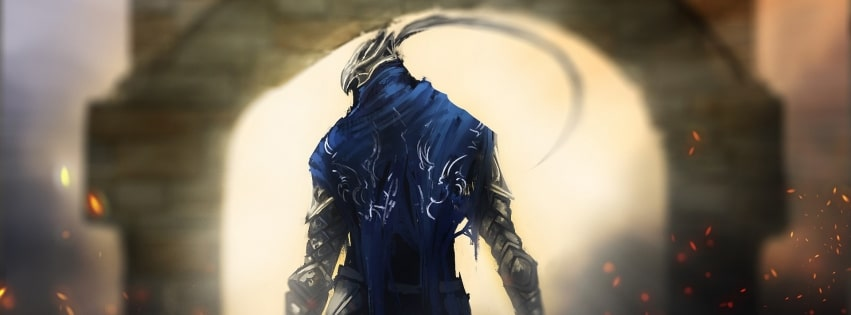 Artorias of The Abyss Fantasy Warrior Dark Souls Facebook cover photo