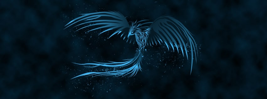 Blue Phoenix Facebook cover photo