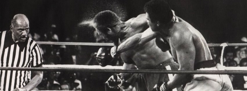 Boxing The Punch Facebook cover photo