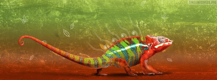 Chameleon in Red Facebook cover photo