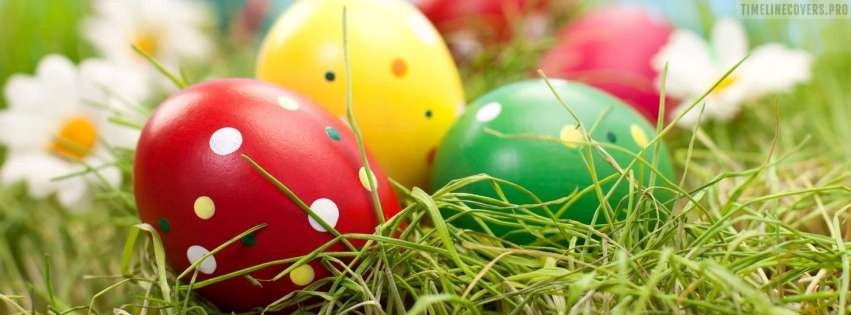 Easter Egg Hunt Facebook cover photo