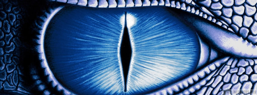 Fantasy Dragon Eye Facebook cover photo