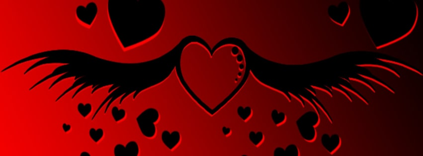 Flying Hearts Facebook cover photo