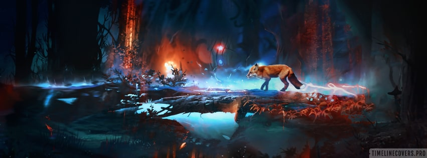 Fox in The Night Art Facebook cover photo