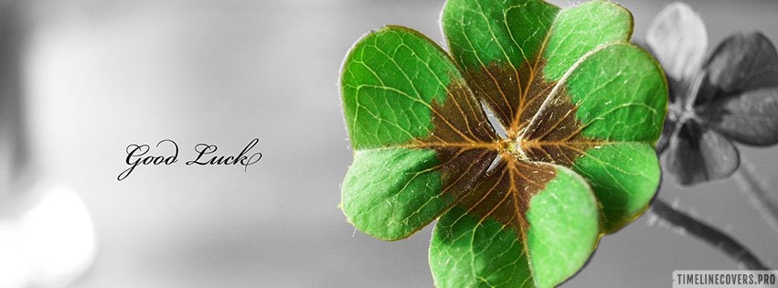 Good Luck St Patricks Day Facebook cover photo