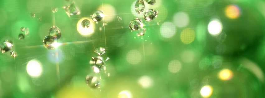 Green Jewels Facebook cover photo
