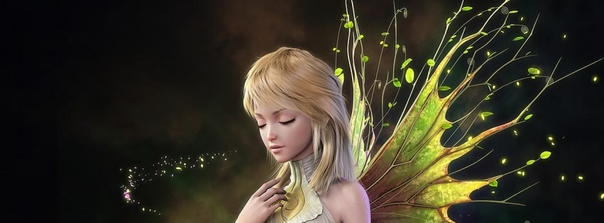 Hada Anime Fairy Facebook cover photo