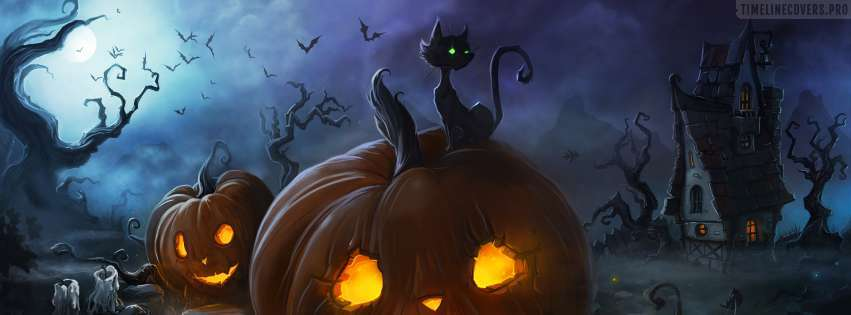 Halloween Cat and Lantern Facebook cover photo