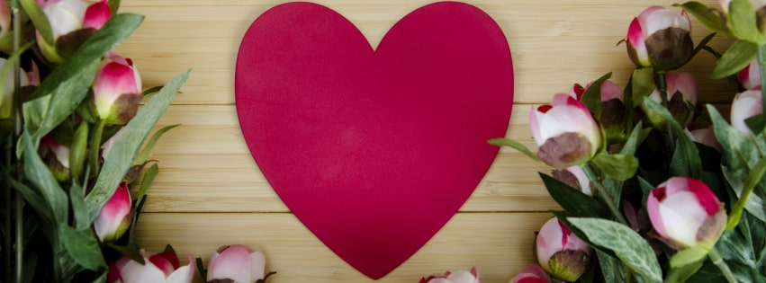 Heart Love Peony Pink Flower Romantic Facebook cover photo
