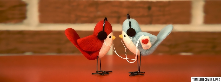 Love Birds Listening to Music Facebook cover photo