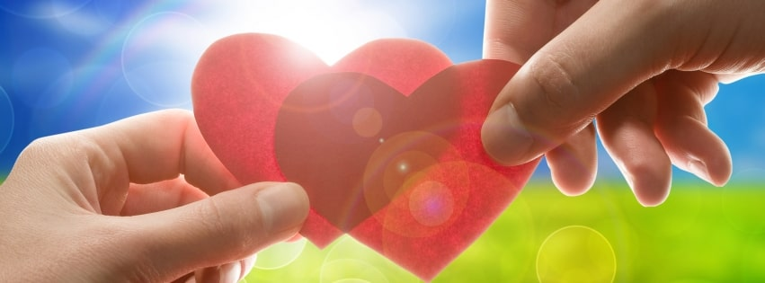 Photography Love Sunlight Hearts Facebook cover photo
