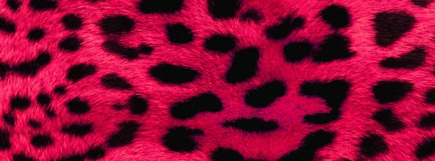 Pink Leopard Facebook cover photo