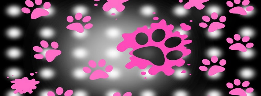 Pink Panther Footprints Facebook cover photo