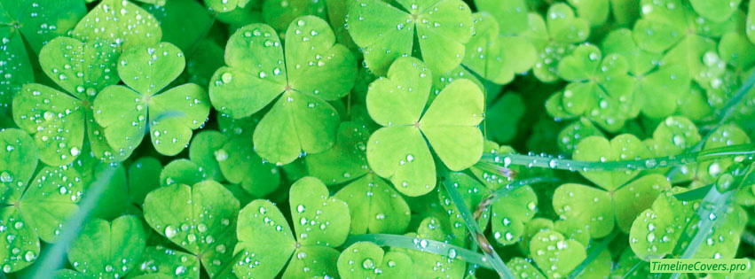 St Patricks Day Clovers Facebook cover photo
