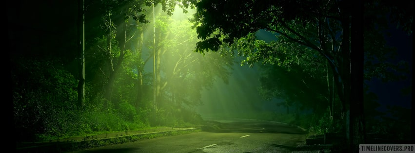 Street Light Shining on Dark Forest Road Facebook cover photo