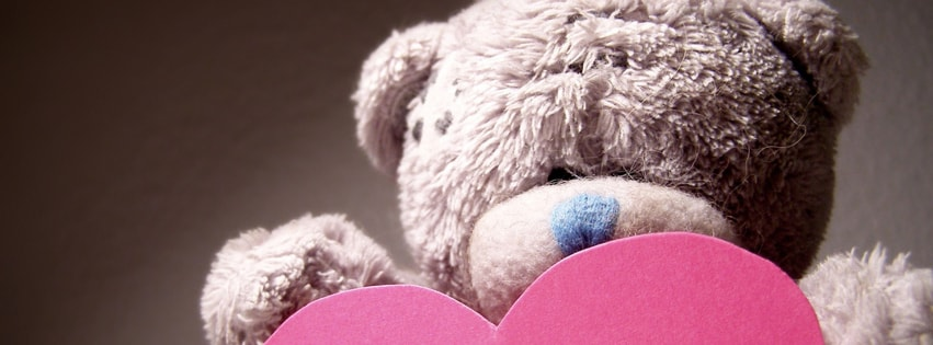 Teddy Bear Heart Facebook cover photo