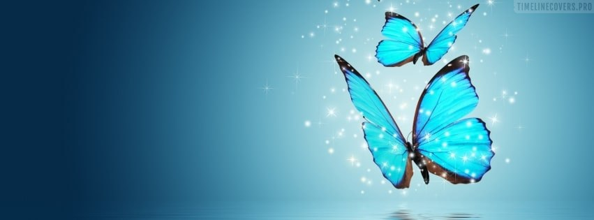 Two Blue Butterflies Facebook cover photo