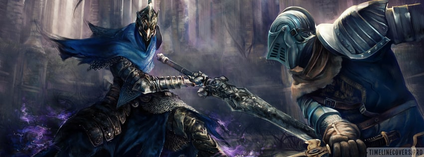 Video Game Dark Souls Artorias of The Abyss Duel Facebook cover photo