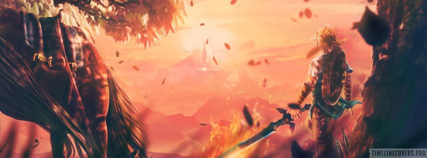 Video Game The Legend of Zelda Breath of The Wild Amazing View Facebook cover photo
