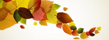 Fall Leaves Facebook Cover