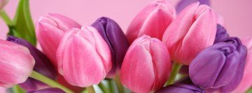 Flowers Tulips Facebook Banner