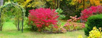 Autumn Park with Bushes and Flowers Facebook Banner