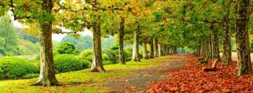 Awesome Autumn Park Foliage Facebook Wall Image