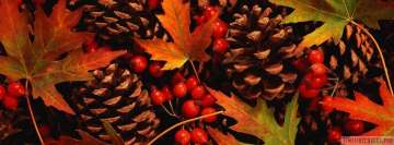 Beautiful Autumn Pineals Leaves and Berries Facebook Wall Image