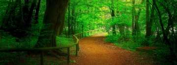 Bosque Green Forest Path Facebook Wall Image