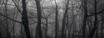 Dark Forest2 Facebook Banner