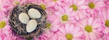 Easter Nest with Pink Flowers Facebook cover photo