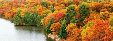 Fall Autumn Forest Facebook Wall Image