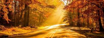 Fall Photography Sunbeam Facebook Cover