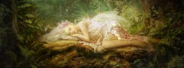 Fantasy Naptime Fairy Facebook Background