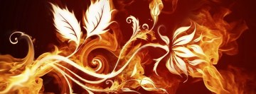 Fire Rose Facebook cover photo