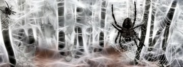 Fractalius Spiders Facebook Cover