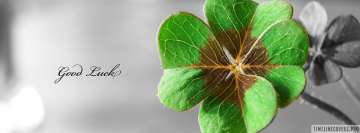 Good Luck St Patricks Day Facebook Wall Image
