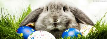 Grey Easter Rabbit Facebook cover photo