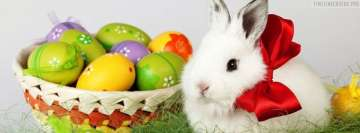 Happy Easter Bunny and Eggs Facebook Banner