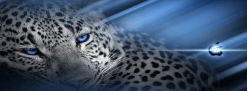 Hd Leopard Fb Cover