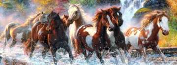 Horses Running Wild Facebook Cover-ups