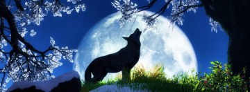 Howling Wolf Facebook Cover