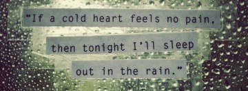 If a Cold Heart Feels No Pain Facebook Cover Photo