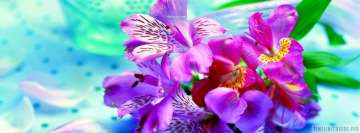 Iris Purple Flower Facebook Wall Image