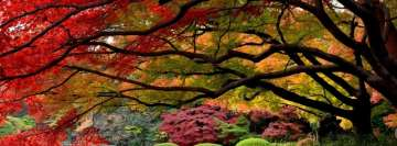 Japanese Garden October Facebook Cover