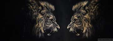 Lion vs Lion Facebook Cover Photo