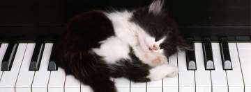 Little Cat Sleeping on a Piano Facebook cover photo