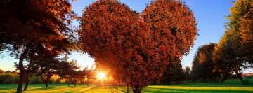 Love Tree with Sunbeam Facebook Background TimeLine Cover