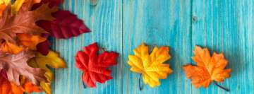 Lovely Natural Autumn Colors Facebook Banner